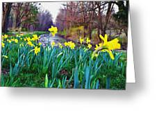 Bucks County Spring Greeting Card