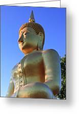 Buddha With Sunset Greeting Card