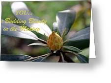 Budding Beauty Greeting Card