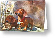 Buddy And Peaches On Top Of Rib Mountain Greeting Card