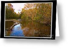 Buffalo Creek Greeting Card