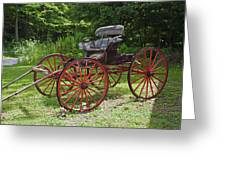 Buggy 11628 Greeting Card