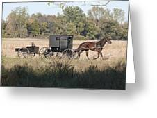 Buggy And Wagon Greeting Card