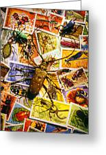 Bugs On Postage Stamps Greeting Card
