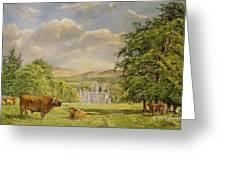 Bulls At Balmoral Greeting Card