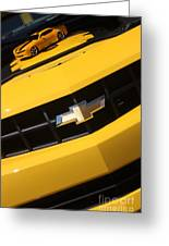 Bumble Bee Grill-7921 Greeting Card