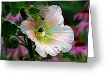 Bumble Bee Pollen Collector  Greeting Card