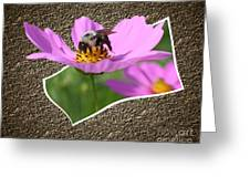 Bumble Bee Pop Out Greeting Card