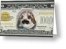 Bunny Money Greeting Card
