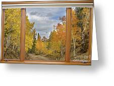 Burning Autumn Aspens Back Country Colorado Window View Greeting Card