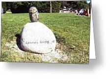 Burrowing Owl Meets Poetry Stones Of Crescent Beach Greeting Card
