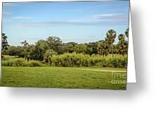 Busch Gardens Landscape Greeting Card