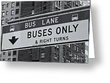 Buses Only II Greeting Card