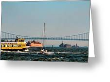 Busy Waters Greeting Card
