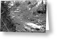 Butte Creek In Black And White Greeting Card
