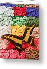 Butterfly And Buttons Greeting Card