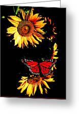 Butterfly And Sunflower Greeting Card