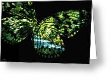 Butterfly Country Card Greeting Card