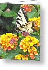 Butterfly Dining Bdwc Greeting Card