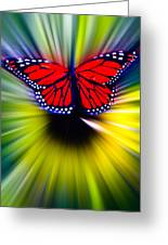 Butterfly Fly Greeting Card