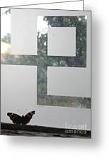 Butterfly Geometry  Greeting Card