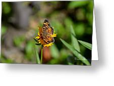 Butterfly Gold Greeting Card