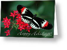 Butterfly Holiday Card Greeting Card