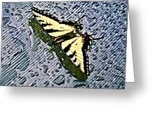 Butterfly In Rain Greeting Card