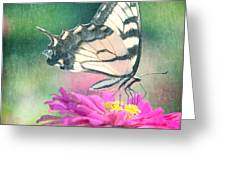 Butterfly Greeting Card by Kim Fearheiley