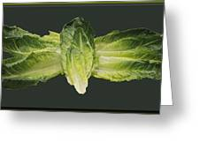Butterfly Lettuce Greeting Card