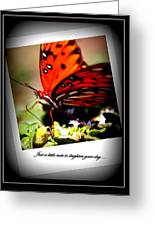 Butterfly Note Card Greeting Card