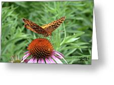 Butterfly Pitstop Greeting Card