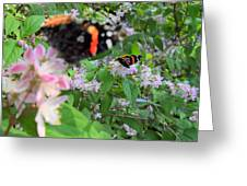 Butterfly Reflection Greeting Card