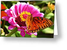 Butterfly Treat Greeting Card