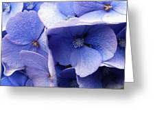 Butterfly Wing Blue Flowers Greeting Card