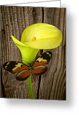 Butterfly With Calla Lily Greeting Card