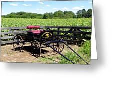 Buttonwood Farm Ct Usa Greeting Card by Kim Galluzzo Wozniak