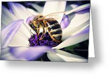 Buzz Wee Bees Greeting Card