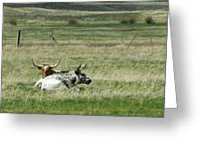 By The Horns Greeting Card