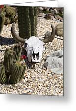 Cactus And Cow Skull Greeting Card