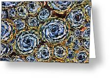 Cactus Blues Greeting Card by Yvonne Scott