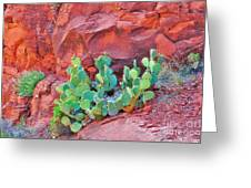 Cactus Growing In The Red Rocks Greeting Card