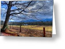 Cades Cove Lane Greeting Card