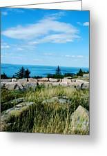 Cadillac Mountain Summit View Greeting Card