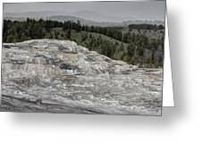 Calcite Bench - Mammoth Hot Springs Greeting Card