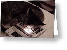 Calculator And Nightlite Greeting Card