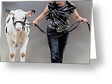 Calf Competition Greeting Card