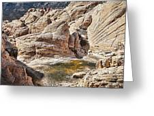 Calico Tanks Greeting Card by Kelley King
