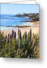 California Coast Flowers Photo Greeting Card