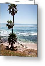 California Coastline Photo Greeting Card